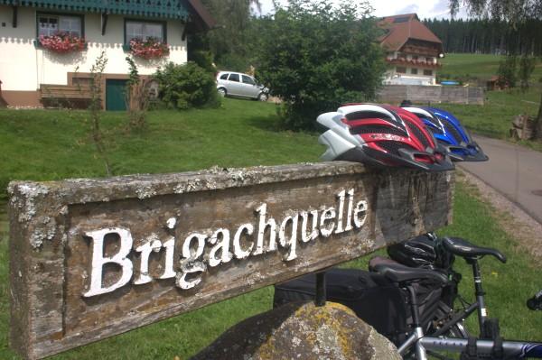 Brigachquelle